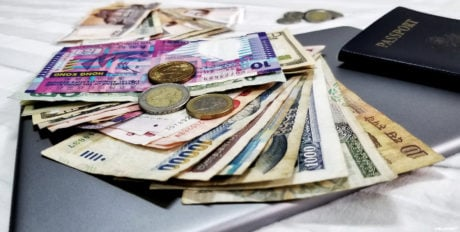Foreign Currency as Souvenirs and Backup Cash /// Vinjatek