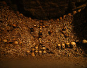 - The Skull and Bones of The Catacombs of Paris -