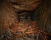 - Paris Catacombs Remains Chaimber -