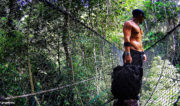 Penang Jungle Bridge Trekking /// Vinjatek