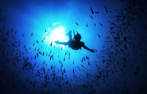 FREEDIVING: Skills to be a Masterful Man /// VINJABOND