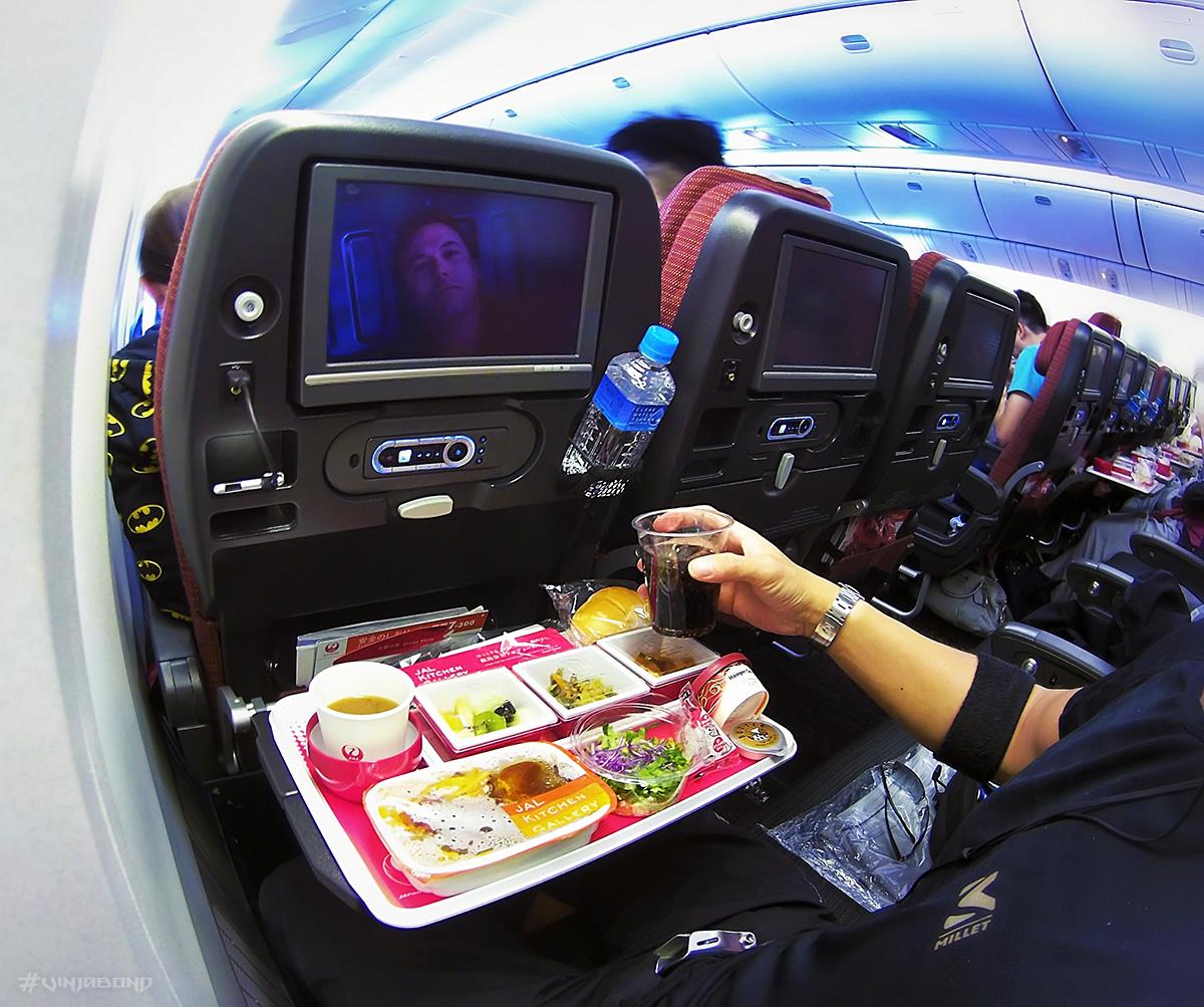 JAL Airplane Flight ///