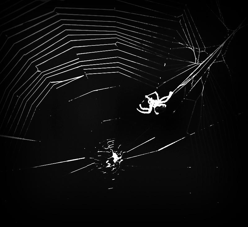 The Darknet Guide: Introduction /// Vinjabond