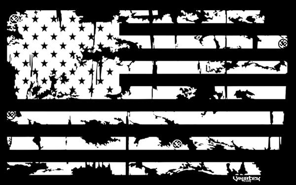 I am a Patriot Flag // Vinjatek