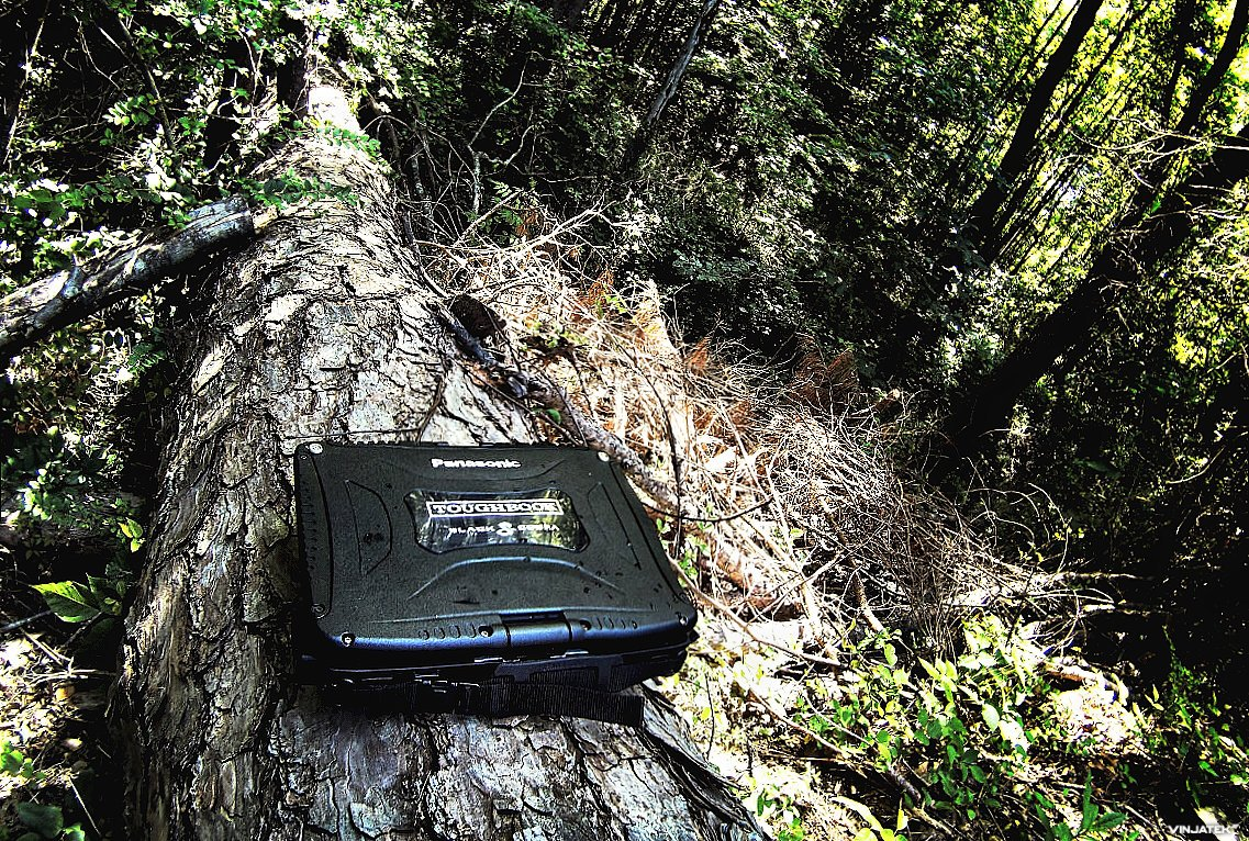 Toughbook CF19 in the Jungle /// Vinjatek