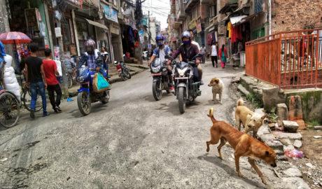 Life Traffic on The Streets of Kathmandu, Nepal /// Vinjatek